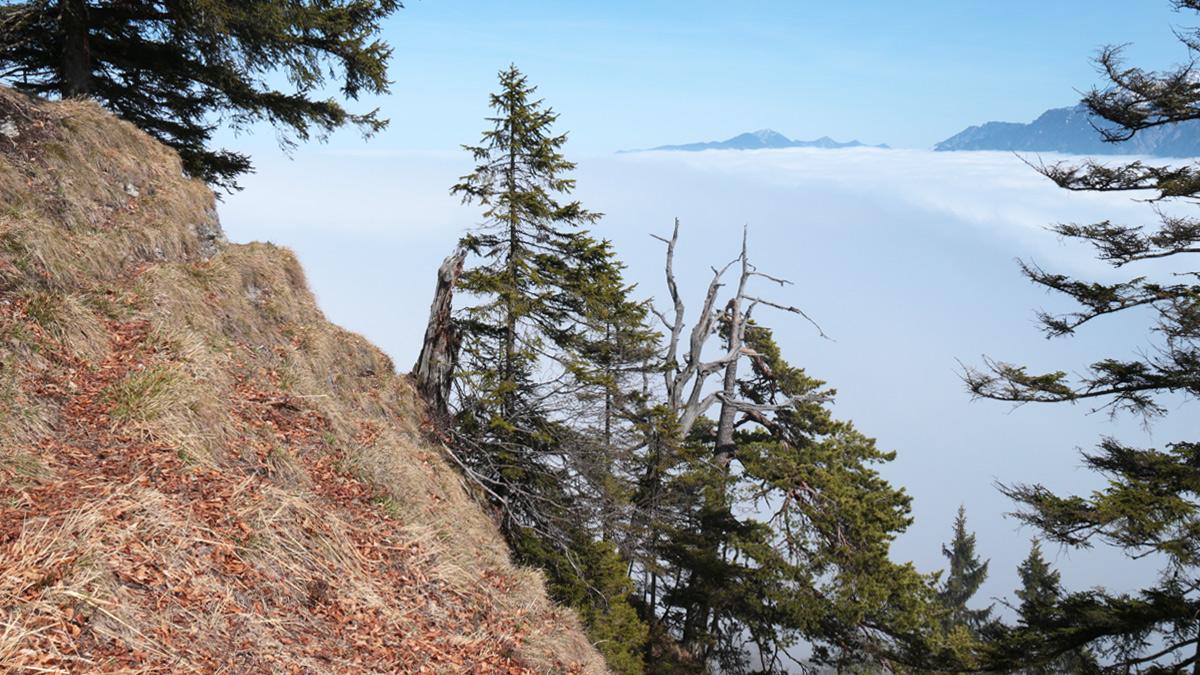 nur ganz kurz gab der Nebel den Blick vom Schafkopf hinaus über das Loisachtal frei
