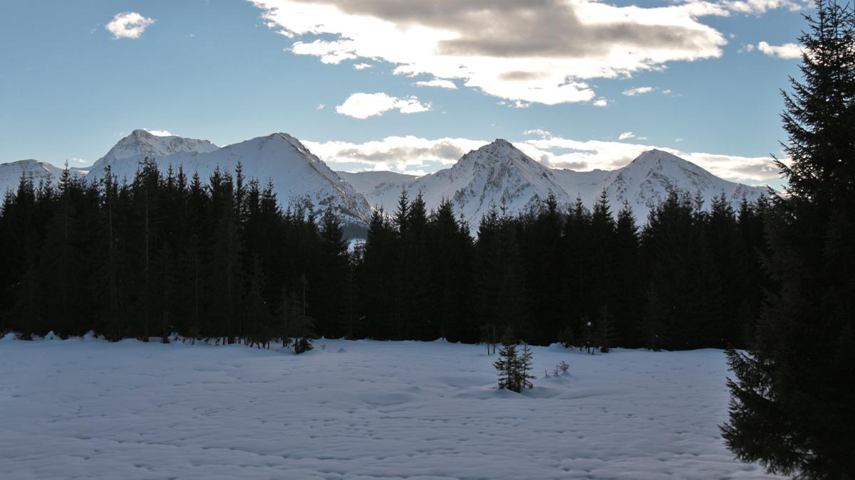 der Ausblick vom Wiesler Berg gegen Süden hin zu (v.l.) Gaishorn, Rohnenspitze, Ponten und Bschiesser