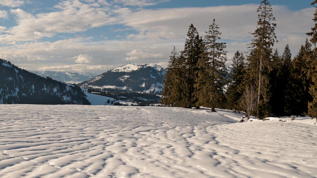 die Hochfläche am Wiesler Berg