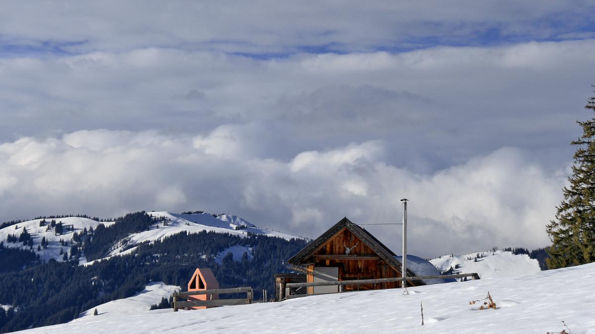 die kleine Jagdhütte am Wiesler Berg - im Hintergrund das Wertacher Hörnle