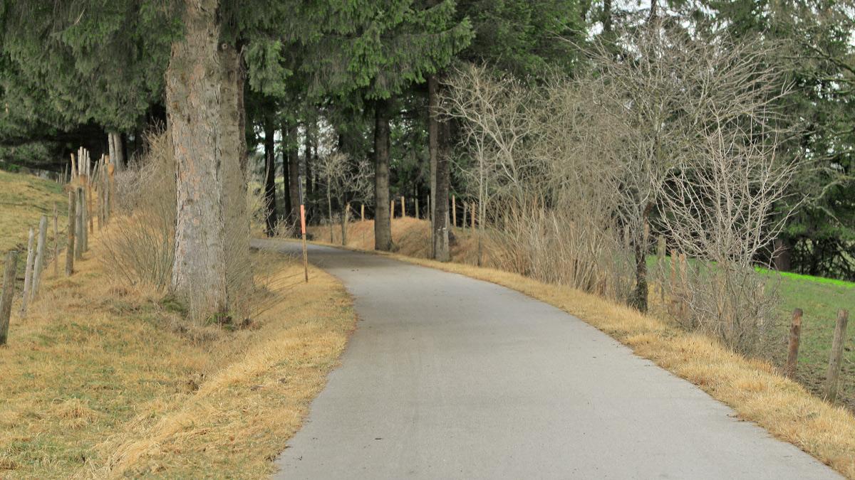 heute wird die Trasse der ehemaligen Via Claudia Augusta in der Nähe von Sameister als Radweg genutzt