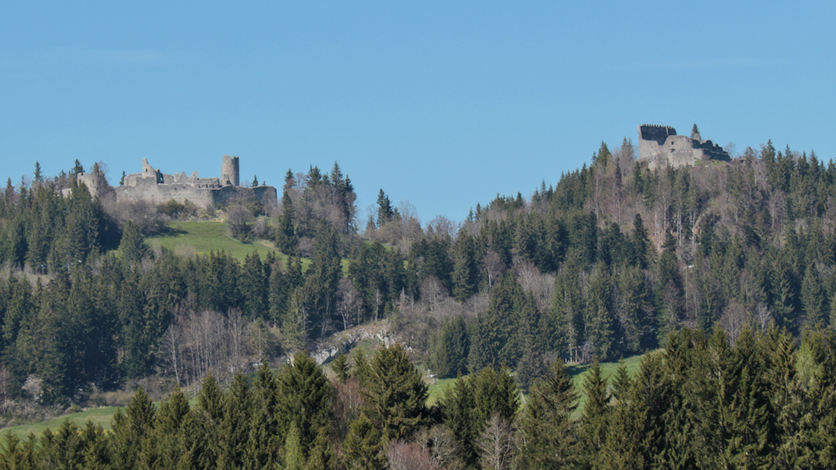 Burgruine Eisenberg und Hohenfreyberg