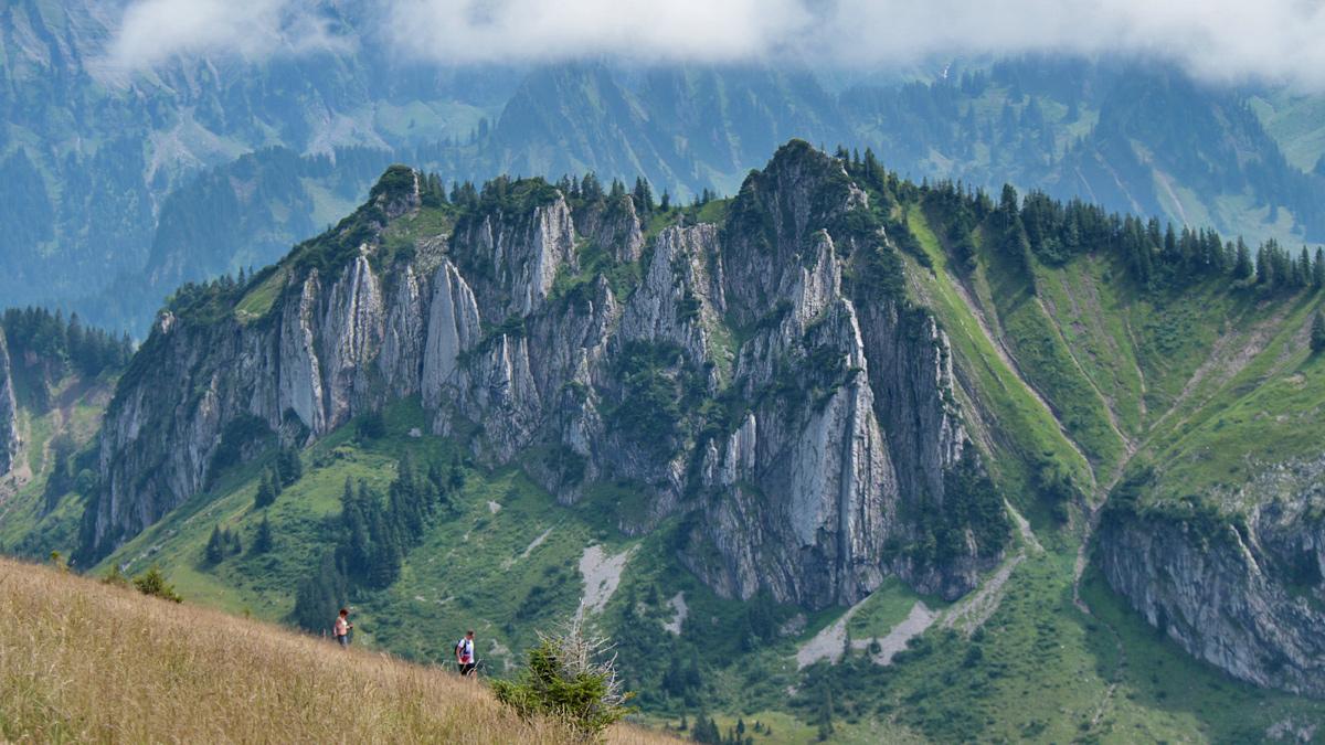 Ausblick von der Stongerhöhe über die Almwiesen hinüber zum Luguntenkopf