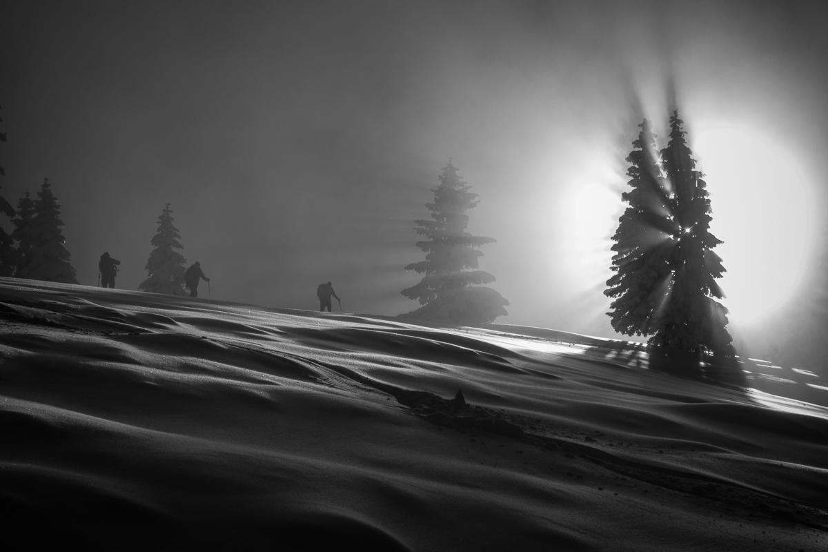 Sonnenkopf an Alpenspezi