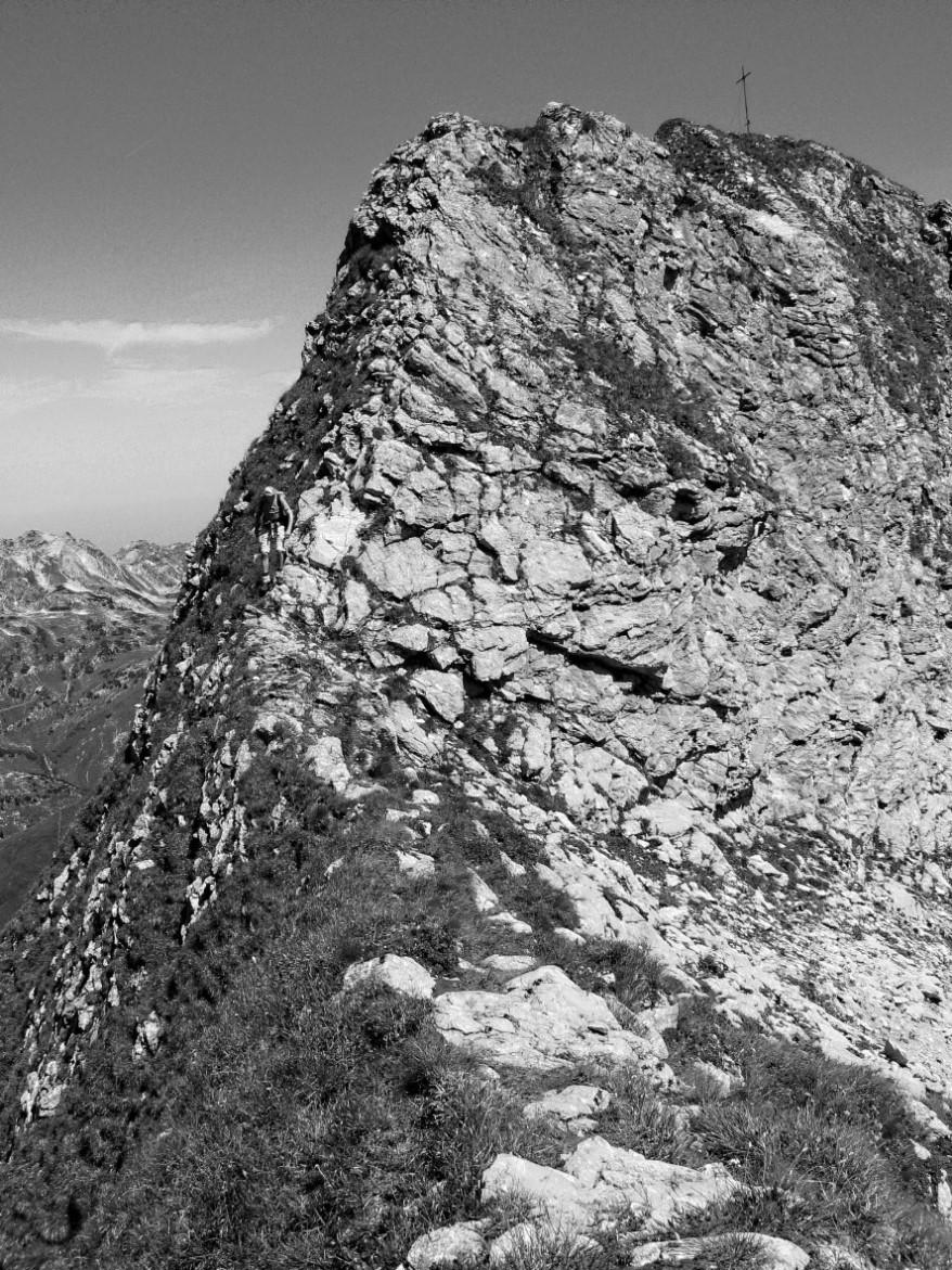 letzter Gipfelaufschwung zum Schneck (Allgäuer Alpen)