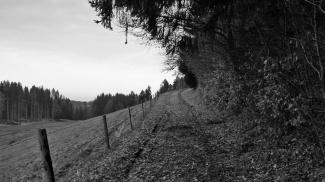 burgweg  langenegg  ruine
