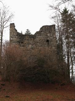 Ruine Langenegg