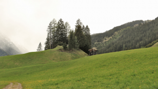 Burgstall bei Bach