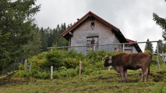 Hütte nördlich des Sonnenkopfes