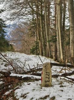 Grenzstein am Vilser Berg