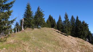 Östlicher Koppachstein