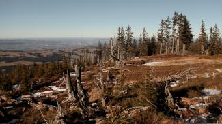 Ausblick vom Starzlachberg