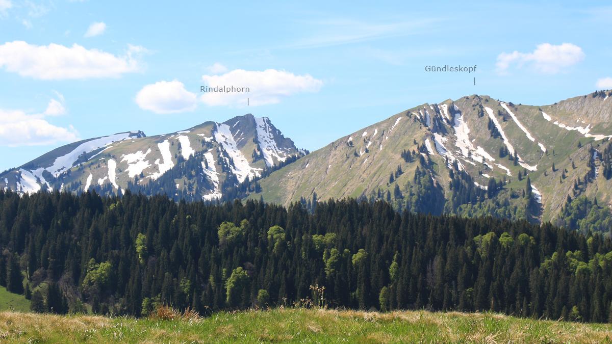 Ausblick vom Ostertalberg nach Nordwest zum Rindalphorn und dem Gündleskopf