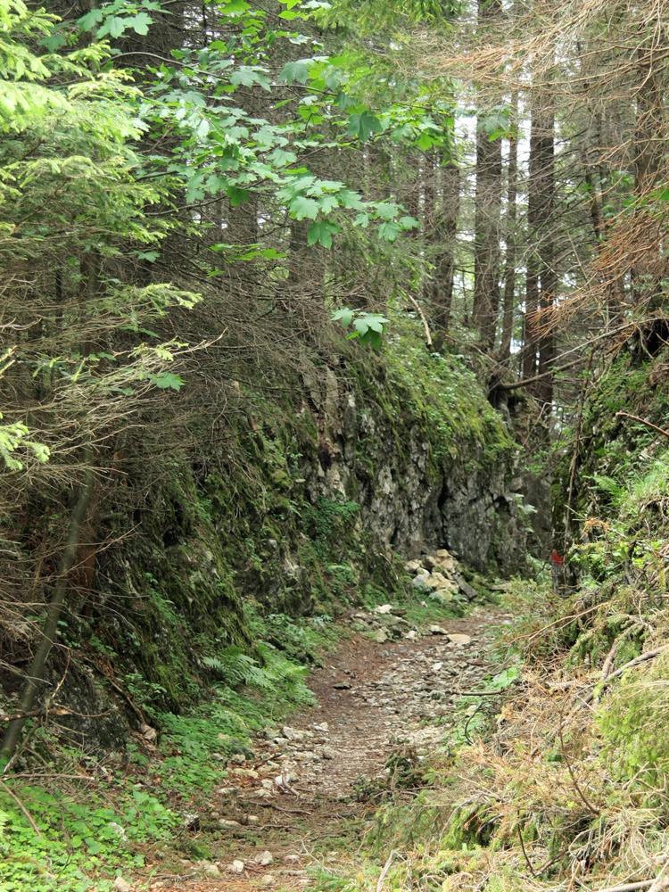 künstlich angelegter Hohlweg am Erzberg (Frauensee)