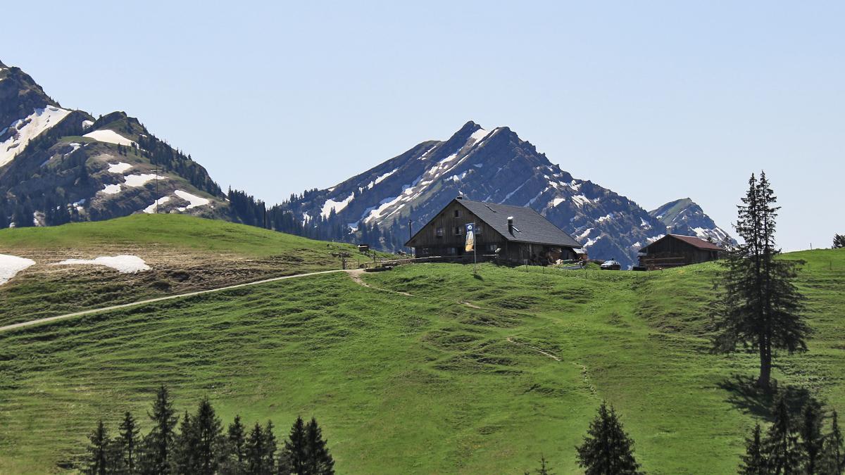 die Alpe Mittelberg vor dem markanten Rindalphorn