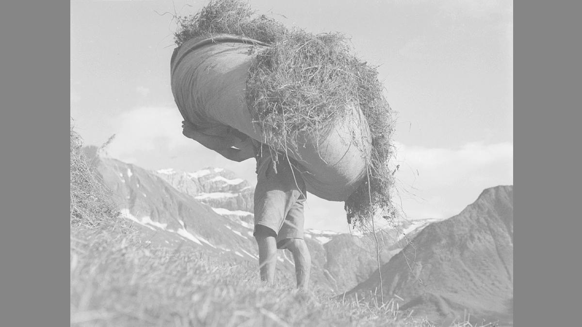 Bergbauer beim Heueinbringen - Foto: Sammlung Risch-Lau, Vorarlberger Landesbibliothek
