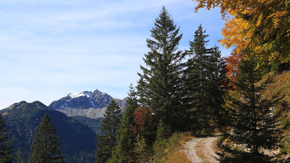 Ausblick beim Aufstieg hin zu der Rauther Alpe hinüber zur Leilachspitze