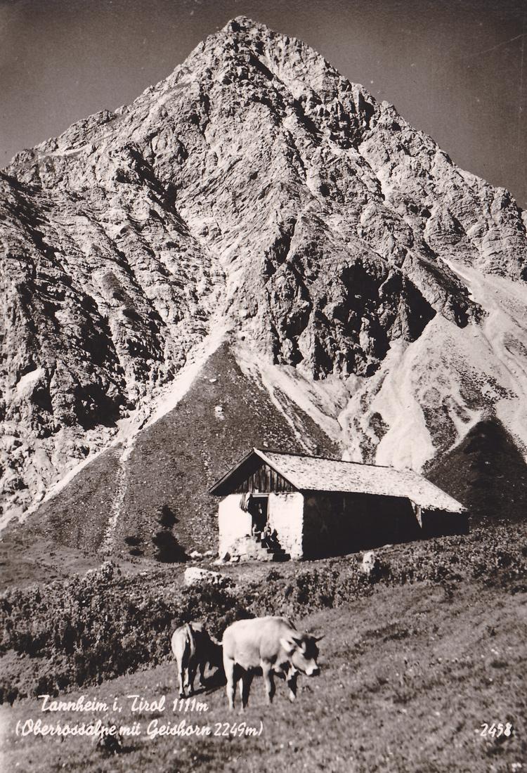 die Obere Roßalpe mit dem Gaishorn bei Tannheim - Foto Gehring