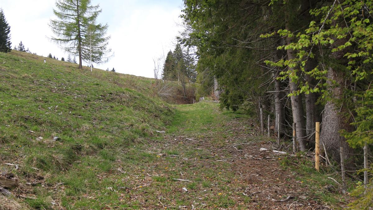 die alte Trasse der Salzstraße am Oberjoch