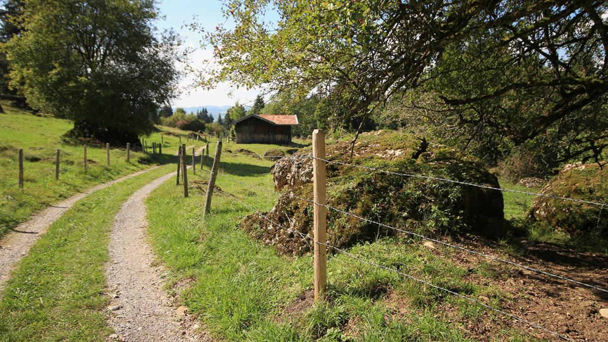 hier verlief einst die Alte Salzstraße nahe Rottach