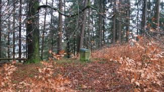 Burgstall Kapf