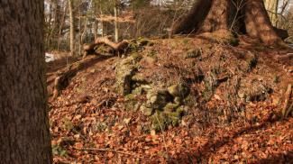 Burg Kalden Mauerreste