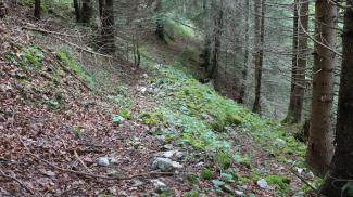 knappenweg bergbaugebiet klemmtal pflach