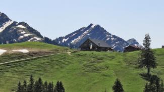 Alpe Mittelberg