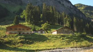 Alpe Breitengehren