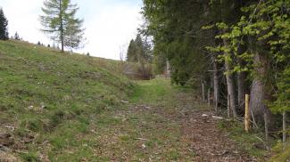 Salzstraße am Oberjoch