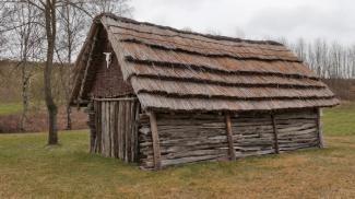 Steinzeitsiedlung Pestenacker