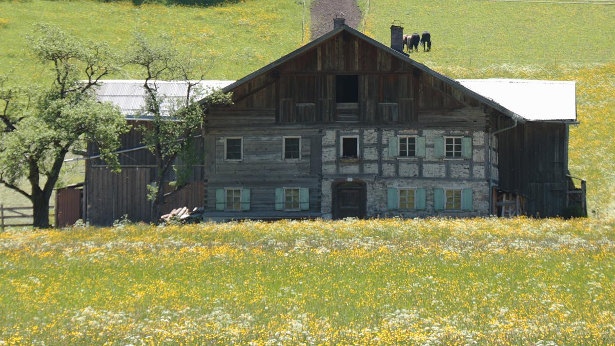das Haus 37 in Ober-Stockach