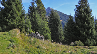 Rauther Alpe