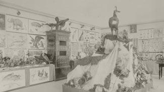 Volksschule Reutte 1898