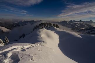 """2009/01 """"Spuren im Schnee"""" (Platz 2)"""
