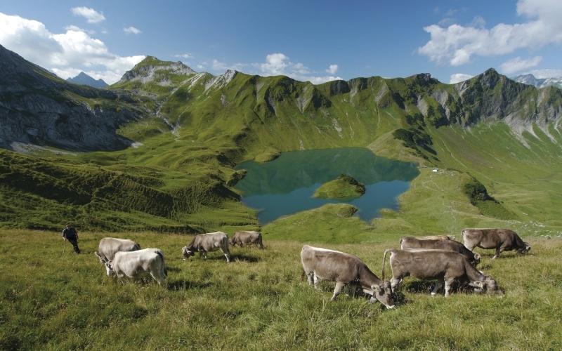 Der Schrecksee ist wunderschön und ein hervorragendes Beispiel für eine umweltverträgliche Energieerzeugung durch Wasserkraft. Foto: Wolfgang B. Kleiner