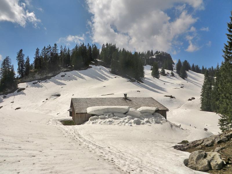 Obere Sattelalpe und die Gipfelmauer der Mittagsfluh
