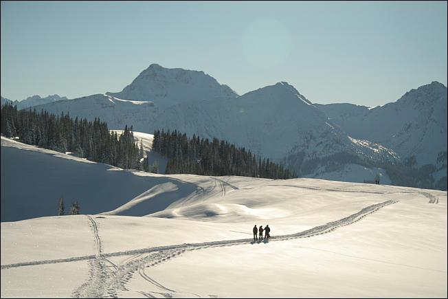 am Gipfelrücken zwischen Pürschling und Schönkahler